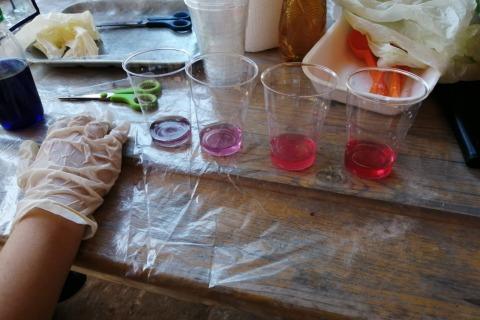 Montessori-V-gruppo-chimica