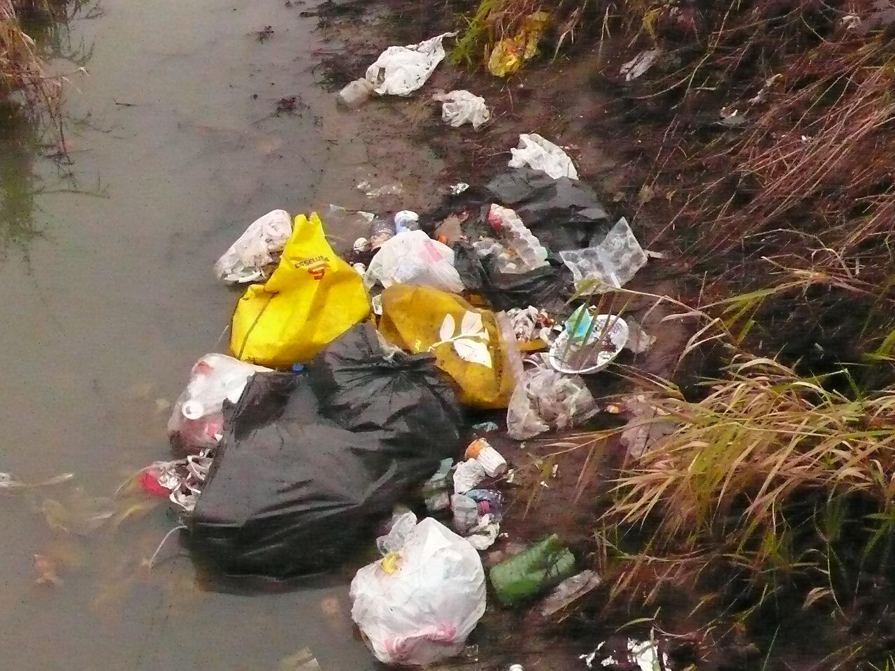 , Pronto il progetto per ripulire i corsi d'acqua del Parco Sud!