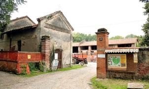 Volontari puliscono il Lago di Mezzetta, Volontari, guidati da Mercedes e Vito, adottano il Lago di Mezzetta, a Trezzano, nel Parco Sud