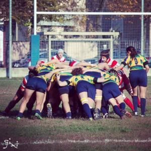 chicken-rugby