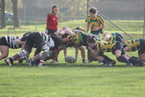 chicken-rugby4