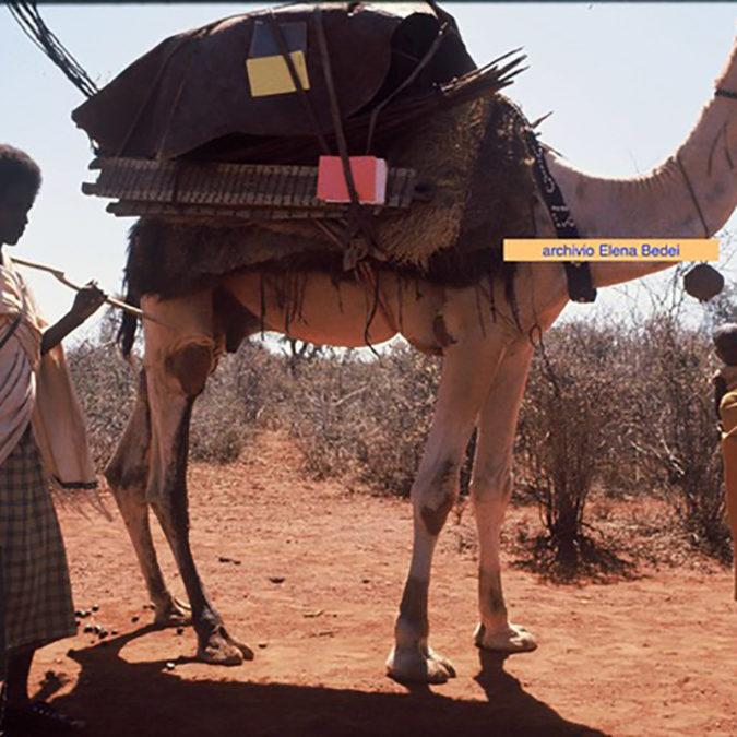 ololaha-nomadi