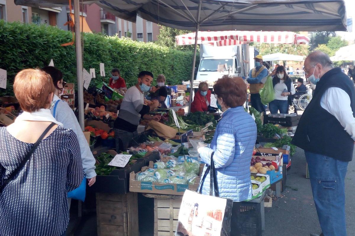 mercato Curiel